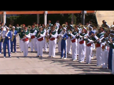DELFINES Y TRITONES MARCHING BAND