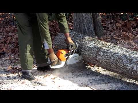 How To Cut Up A Tree With A Chainsaw video