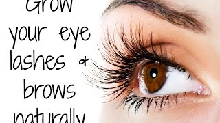 How to grow your Eye Lashes Naturally at home