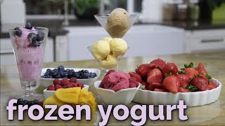 How to Make Nutritious Blueberry Frozen Yogurt | Cleanblend™ Blenders