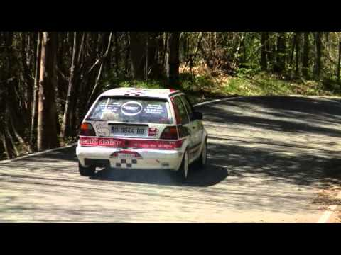 Xl rallysprint virgen del viso 2013