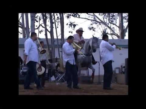 de fiesta con la banda en rancho la caridad