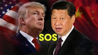 Thời sự VOA Ngày 12-7-2018 || Trung Quốc quyết trả đũa thuế mới của Mỹ