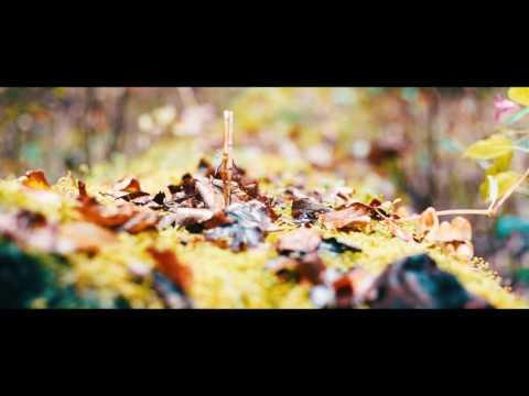 DVG ART - AUTUMN - Sony A7 Cinematic Test