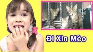 Bé Peanut Đi Xin Mèo Và Cái Kết Là Phải Đem Mèo Đi Trả Lại ! Vì Sao? [Peanut Vlog]