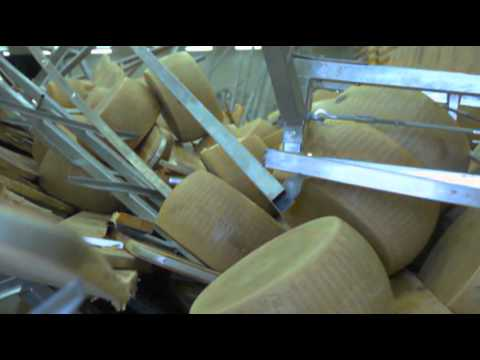 Raw Video: Huge Cheese Losses From Italy Quake