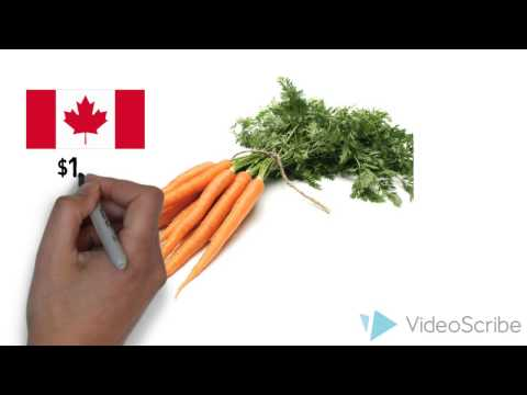 Food Prices in Nunavut: A Wicked Problem