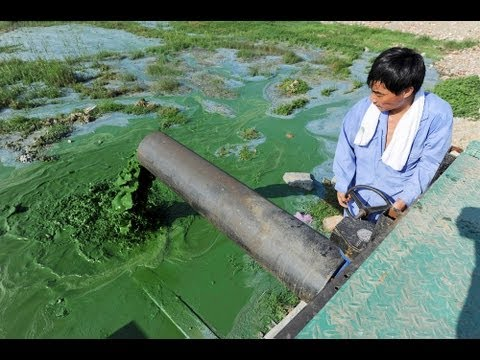 Move Over, Smog: China's Water Pollution Off The Charts (linkasia: 3 1 13) video