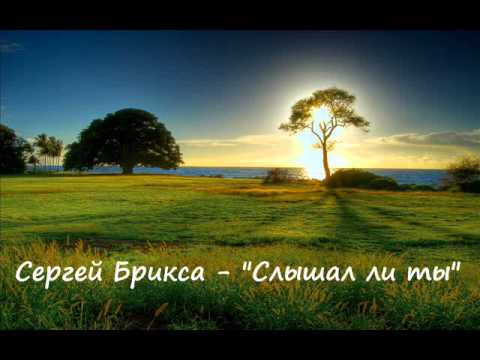Сергей Брикса -