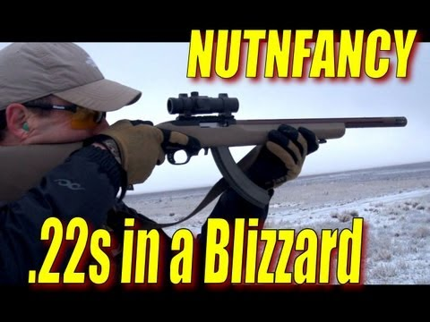 Tactical Solutions .22 Testing in Snow, Pt 4 by Nutnfancy