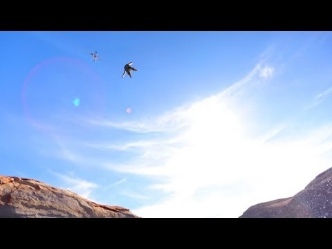 Summer Fun - Zipline Catapult - Bluehouse Skis - Summer Fun