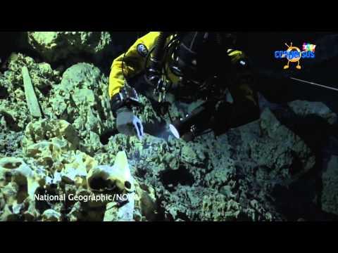 Esqueleto de Naia en Hermeneutas