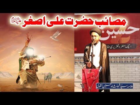 مصائب  حضرت علی اصغر علیہ السلام |علامہ سیّد شہنشاہ حسین نقوی