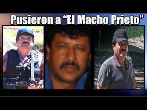 """""""El Chapo"""" y el """"Mayo"""" pusieron a """"El Macho Prieto"""""""