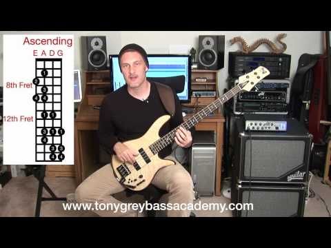 Bass Guitar Lesson - Lydian Mode - Tony Grey