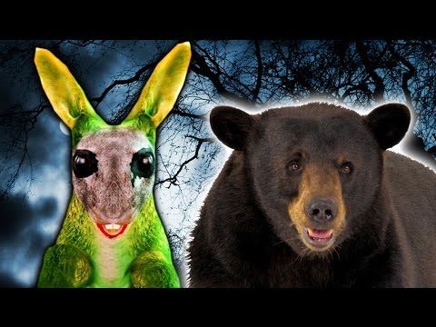 SPOOKY WOODS! | Bear Simulator #11