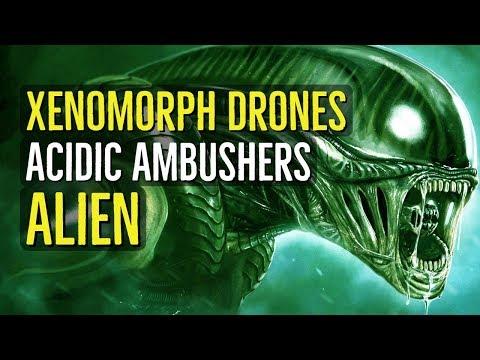 Xenomorph Drones (ALIEN) Creatures Explained