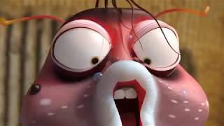 LARVA meilleur de   Dessin animé   Dessins animés pour enfants   LARVA Officiel