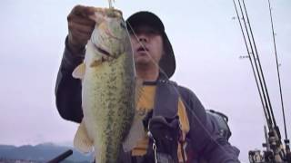 2012 6 23 琵琶湖 フローターでバス釣り Float Tube Bass Fishing in Lake Biwa