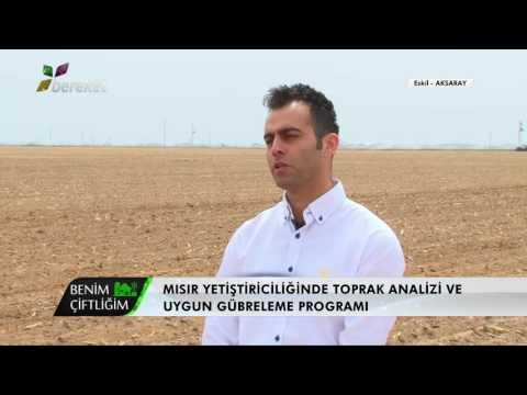 DEKALB Benim Çiftliğim 1. Bölüm - Mısır Yetiştiriciliği
