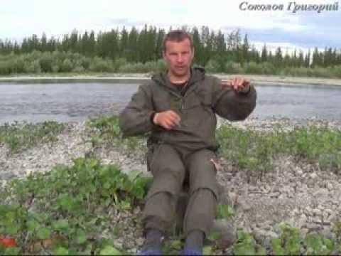 Кривда для рыбалки своими руками 26