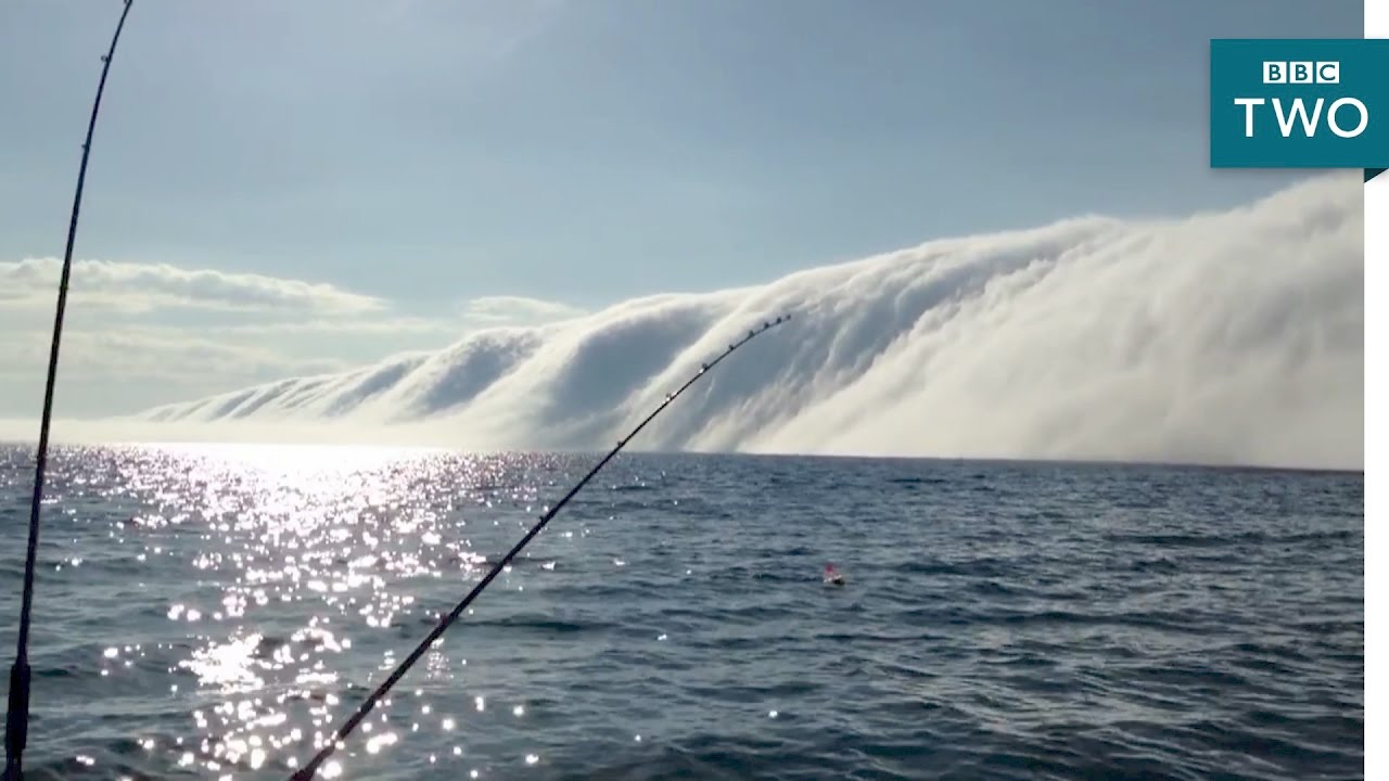 Fog tsunami -  Nature's Weirdest Events: Series 5 Episode 5 - BBC Two