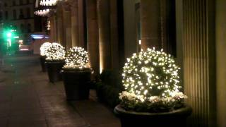 Beverly Wilshire Hotel...festive Decorations In Beverly Hills!