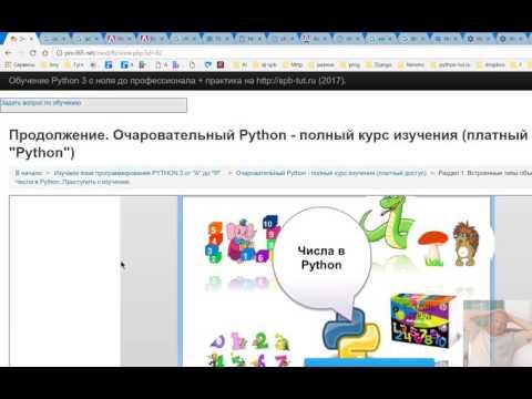 Если не работает Adobe — Flash в Chrome, что делать?