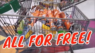 Menards Crazy Day Shopping TONS of FREE Stuff!