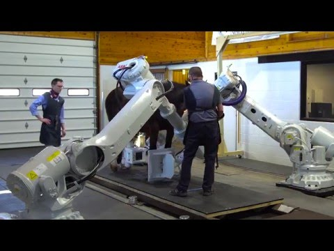 New Bolton Center Pioneers Revolutionary Robotics-Controlled Equine Imaging System