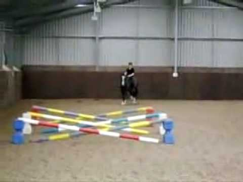 Horse Riding, 3pole jump without reins