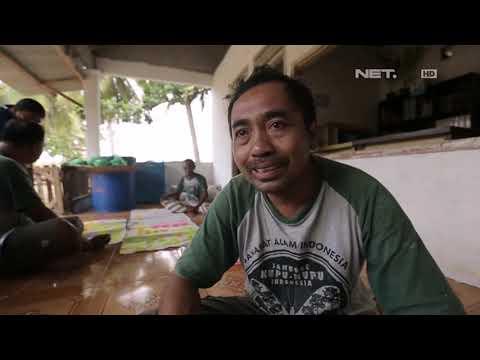 Lentera Indonesia - Sang Pejuang Konservasi