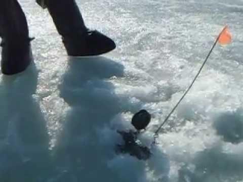 рыбалка жерлицами на озере видео