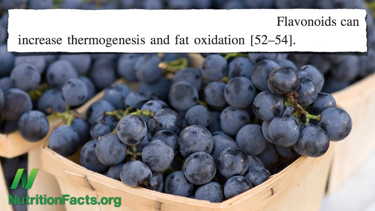 Fat Burning Via Flavonoids