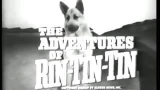 Meet Rin Tin Tin [S1, Ep1] The Adventures of Rin Tin Tin