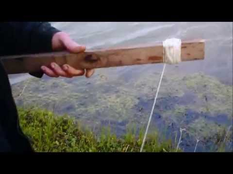 How to run simple trotlines for catfish