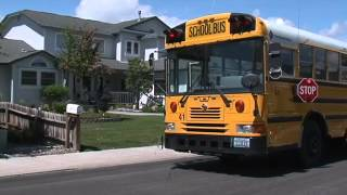 Drivers Guide to School Bus Crossing