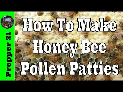 How To Make Fresh Pollen Patties For Honey Bees