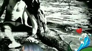 Real Mermaid. Mermaid sighting. Mermaid love
