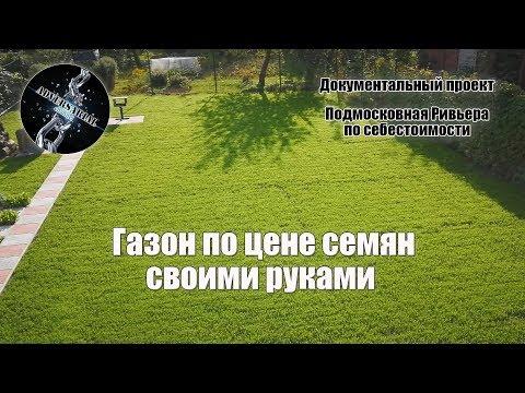 Как засеять газон на даче своими руками 167