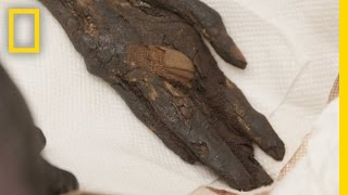 Stolen Mummy's Left Hand Found and Returned to Egypt | National Geographic