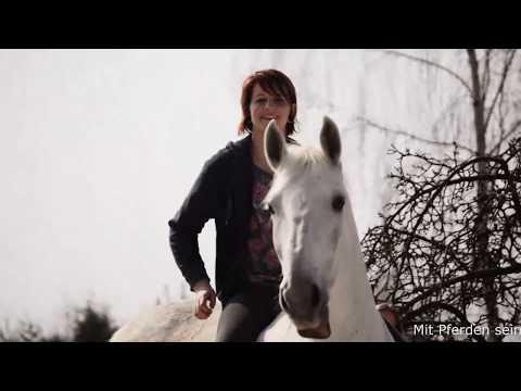 freedom - Mit Pferden sein