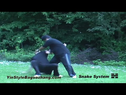 A Brief Introduction to Yin Style Bagua Image 1