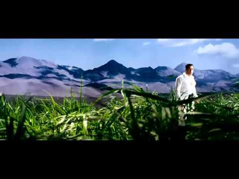 Bruce Raj Hindi Teri Mari Songs video