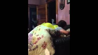 Little Brother Attacks Sleeping Sister