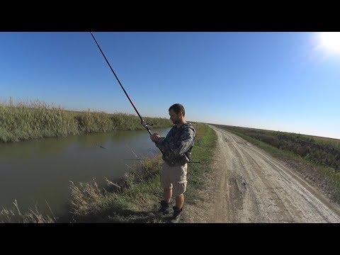 рыбалка на брыньковке