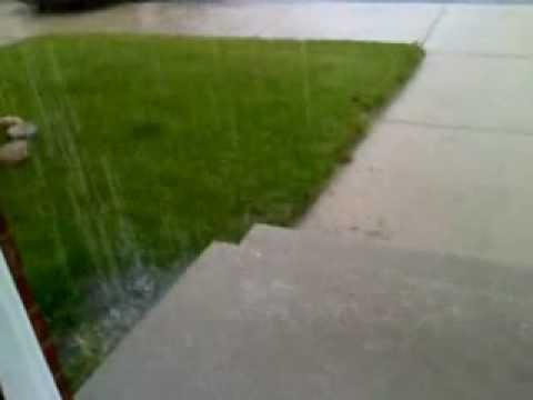 Tropical Storm Debby brings torrential rain to Tampa Bay - Worldnews.