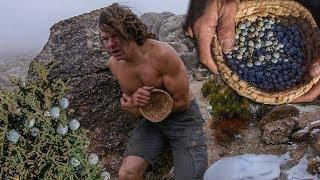 Harvesting Juniper Berries in Freezing Cold Desert
