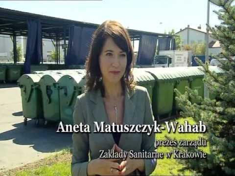 Zakłady Sanitarne W Krakowie