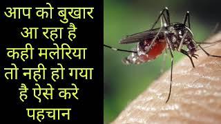 मलेरिया के लक्षण क्या है ।। मलेरिया के लक्षण ।।maleriya ke lakshan
